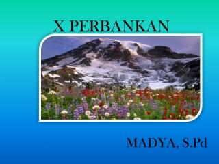 Madyaspd12