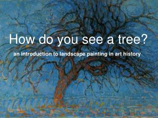 How do you see a tree?