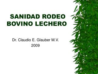 SANIDAD RODEO BOVINO LECHERO