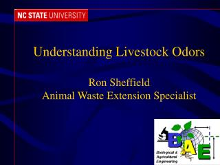 Understanding Livestock Odors Ron Sheffield Animal Waste Extension Specialist