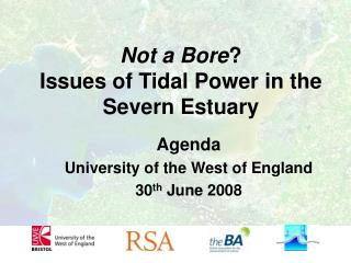 Not a Bore ?  Issues of Tidal Power in the Severn Estuary
