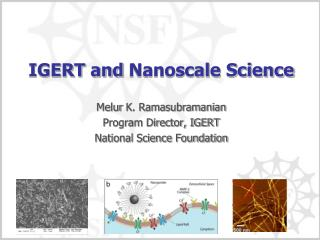 IGERT and  Nanoscale  Science
