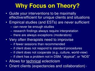 Why Focus on Theory?