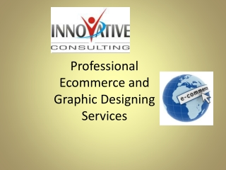 Professional Ecommerce and Web Designing Services