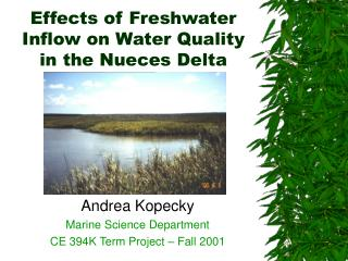 Effects of Freshwater Inflow on Water Quality in the Nueces Delta