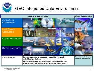 GEO Integrated Data Environment