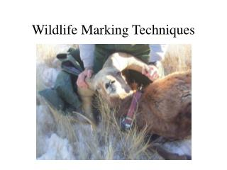 Wildlife Marking Techniques