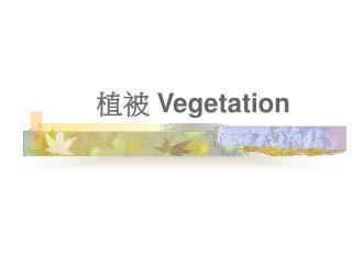 植被  Vegetation