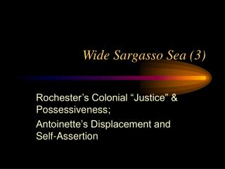 Wide Sargasso Sea (3)