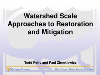 Watershed Scale Approaches to Restoration and Mitigation