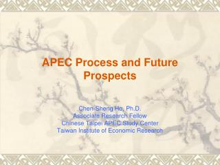 APEC Process and Future Prospects