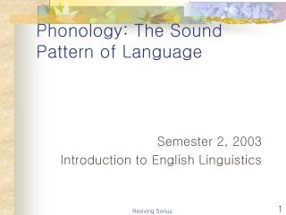 Phonology: The Sound Pattern of Language