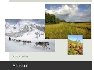 Alaska Presentation for New Zealand
