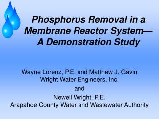 Phosphorus Removal in a Membrane Reactor System—A Demonstration Study
