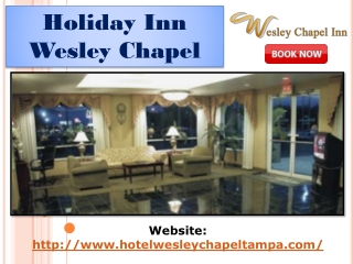 Holiday Inn wesley chapel