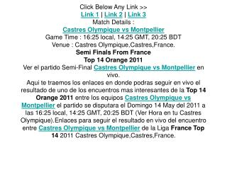 ver el partido top 14 semi-final castres olympique vs montpe