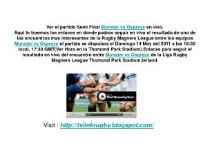 ver el partido semi final munster vs ospreys en vivo 14 may