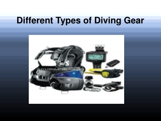 Different Types of Diving Gear
