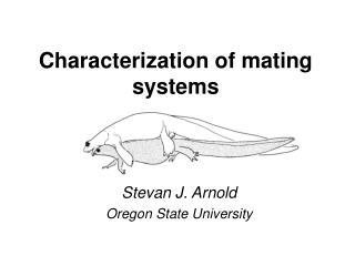 Characterization of mating systems