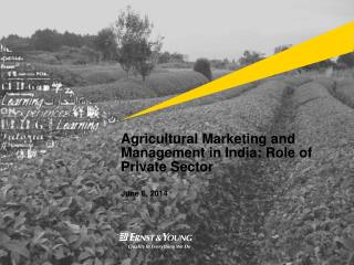 Agricultural Marketing and Management in India: Role of Private Sector