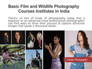 Basic Film and Wildlife Photography Courses Institutes in In