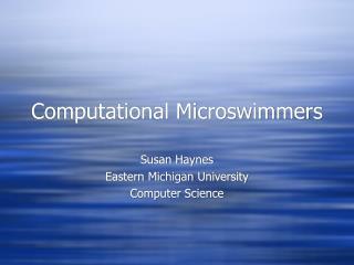 Computational Microswimmers