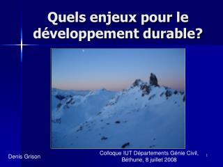 Quels enjeux pour le développement durable?