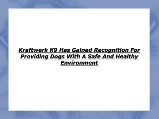 kraftwerk k9 has gained recognition for providing dogs with a safe and healthy environment