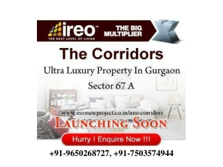 Ireo New Upcoming Projects Call 9650268727
