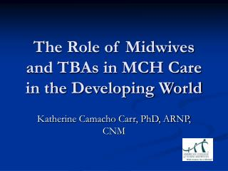 The Role of Midwives and TBAs in MCH Care in the Developing World