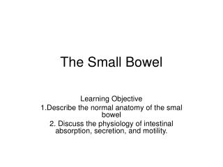 The Small Bowel
