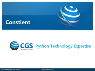 Constient Global Solutions - Python Services