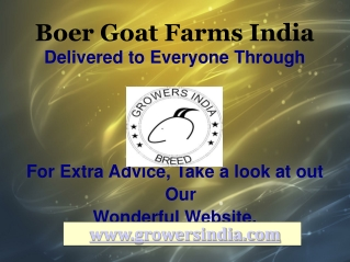 Boer Goat Farms India