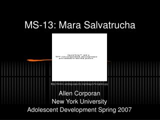 MS-13: Mara Salvatrucha