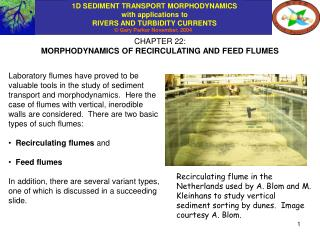 CHAPTER 22: MORPHODYNAMICS OF RECIRCULATING AND FEED FLUMES