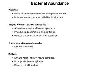 Bacterial Abundance