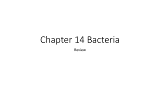 Bacterial Classification and Disease