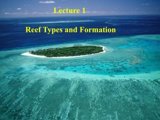 Lecture 1  Reef Types and Formation