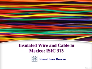 Insulated Wire and Cable in Mexico: ISIC 313