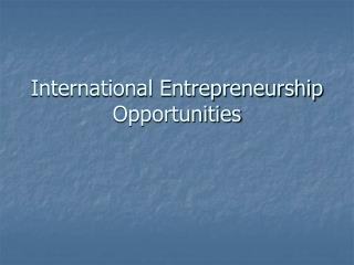 International Entrepreneurship Opportunities