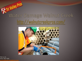 Water Damage Walnut Creek