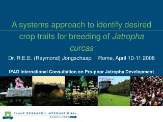 A systems approach to identify desired crop traits for breeding of  Jatropha curcas