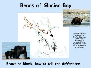 Bears of Glacier Bay