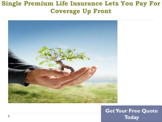 Single Premium Whole Life Insurance Policy