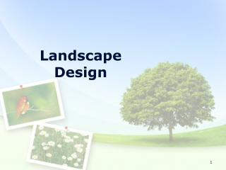 Toronto Landscape Design