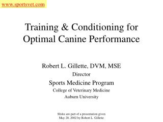 Training & Conditioning for Optimal Canine Performance