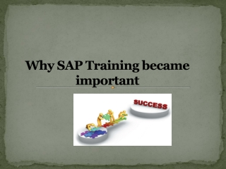 Why SAP Training became important?