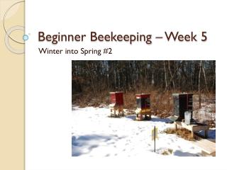 Chemical Free Beekeeping