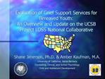Evaluation of Grief Support Services for Bereaved Youth: An ...