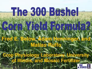 The 300 Bushel  Corn Yield Formula?